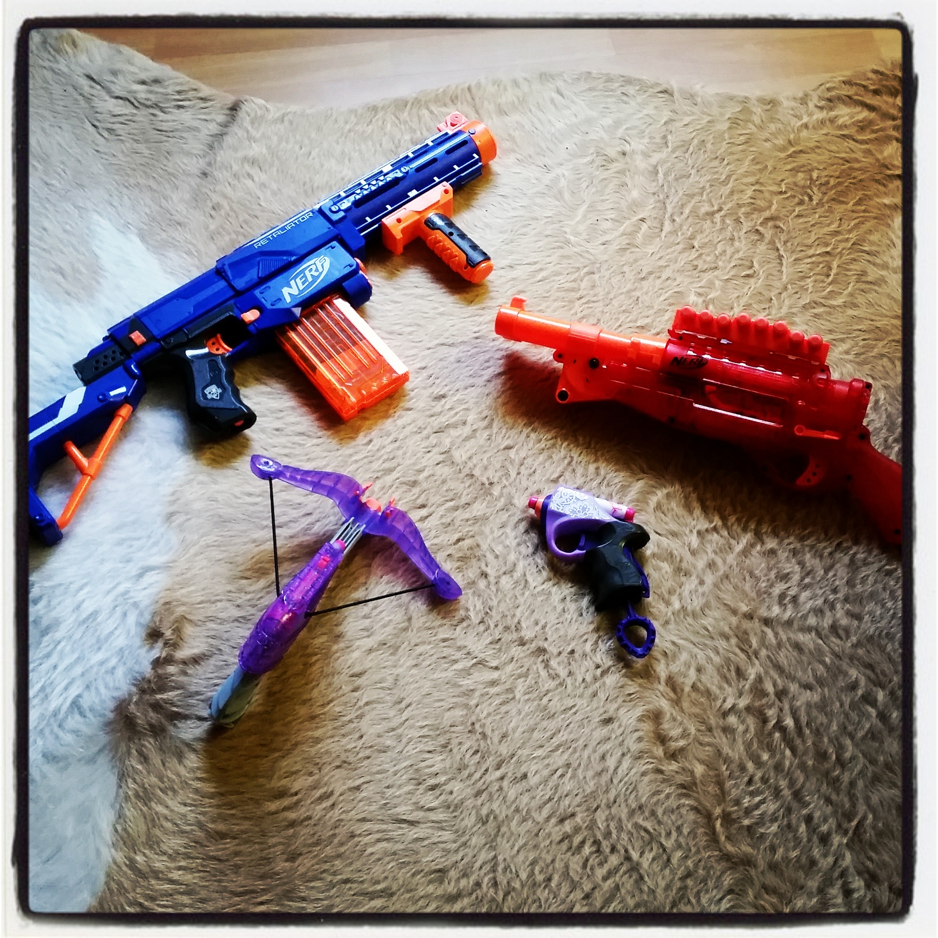 The Nerf family